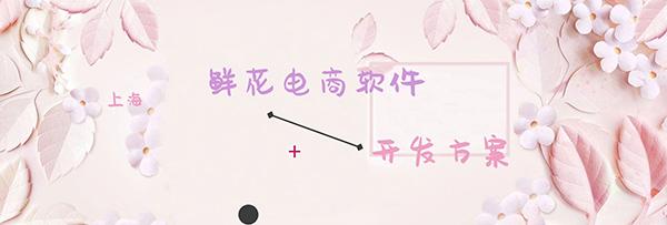 上海鲜花电商软件的开发方案