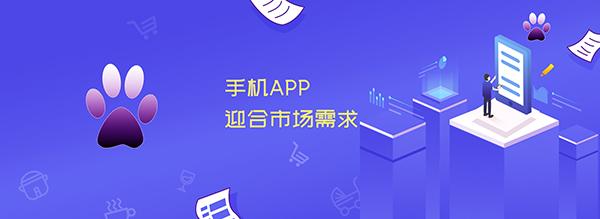 贵阳APP开发:手机APP如何迎合市场需求?